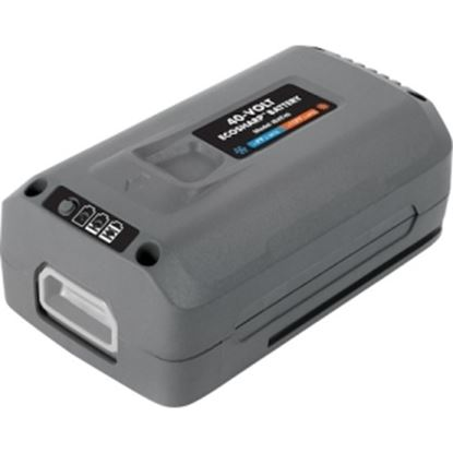 Picture of Snow Joe 40-Volt EcoSharp Lithium-Ion Battery