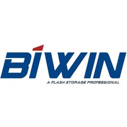 Picture for manufacturer BIWIN STORAGE TECHNOLOGY LIMITED